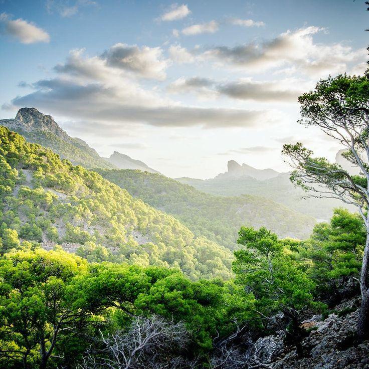 Mallorca / Spanien⠀  ⠀  #reisen #reisetagebuch #travelgram #traumurlaub #traumreise #erholung #tourismus  #ilovetravel #ferien #travelgram #mytravelgram #instatravel #travel #traveling #urlaub #holidayland #hlbsw #reisebuero #wanderlust #mallorca #spain