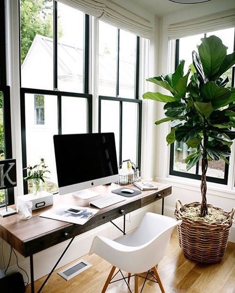 W O R K ➖ A little office inspo for this Monday morning plants make life complete! by @belathee ___________________________________ #homeoffice #greenoffice #freelancerlife #startuplife #entrepreneurlifestyle #inspirationalspaces