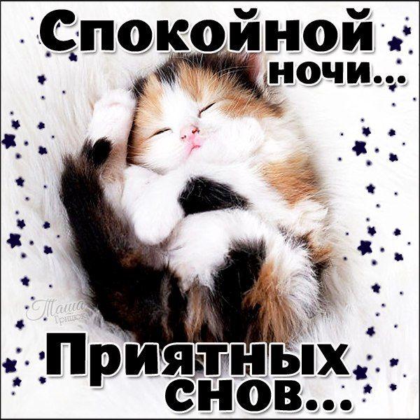 Спокойной ночи я скучаю открытка