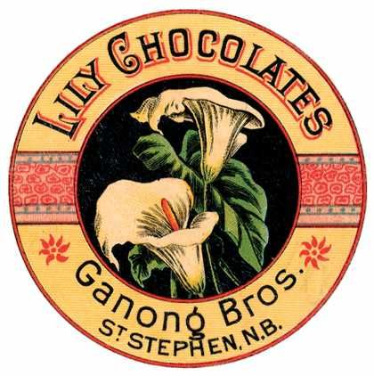 Chocolates Lily