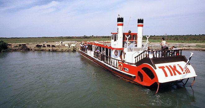 TIKI 3, Croisière en bateau en Camargue, Découverte de la Camargue sur le Petit Rhône.