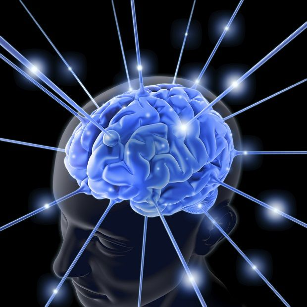 Bu Bitkiler Zihin Açar.!    Vücudumuzu yöneten beynimize iyi bakmak, beynin işlevlerini tam olarak yerine getirmesine yardım eder.    Aldığımız besinler vücuda dağılmadan önce beyine gider. Beyin, besinleri kontrol edip kendine faydalı olanları seçer. Kalanları ise kan sayesinde vücuda dağıtır. Beynimize fayda sağlayacak bitkiler sayesinde zihnimizi canlı tutmak mümkündür.