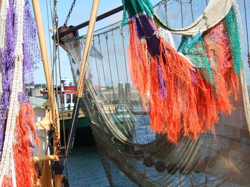 Kleurige visnetten in de haven van Terschelling. Foto: C. Robin