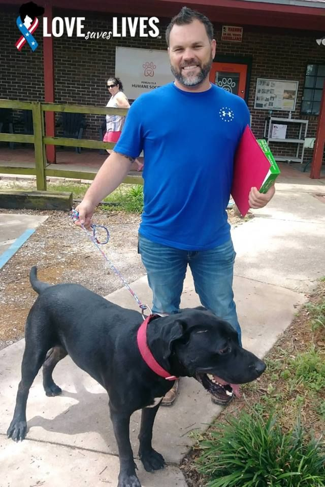 Love This Latest Adoption Through Our New Partners Pensacola
