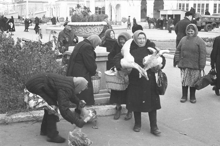 Осенняя ярмарка в Рязани, 1957 год / Назад в СССР / Back in USSR