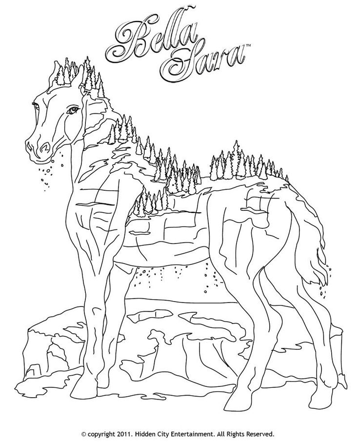 21 best bella sara malesider images on pinterest coloring pages horses and adult coloring - Coloriage bella sara ...