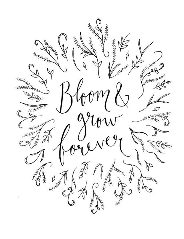 "Edelweiss Art Print ~ ""Bloom and Grow Forever"" ~ The Sound of Music Floral Printable Quote, 8x10 Inspirational Quotes Wall Art"