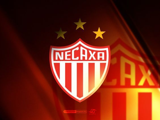 Image result for NECAXA futbol supporters