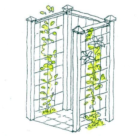 Klätterväxt på armeringsnät mellan stolpar döljer soptunnan oväntat effektivt med grönska.