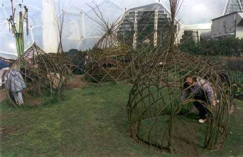 Playground Build & Design | Natural Child Play | Earth Wrights Ltd - Eden Project, 2000. Building the willow maze