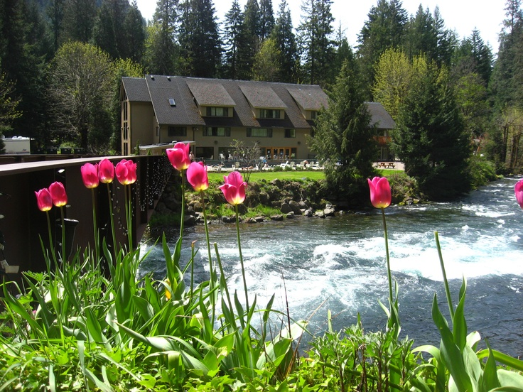 19 Best Lodging In Lane County Images On Pinterest Indoor Pools Indoor Swimming Pools And