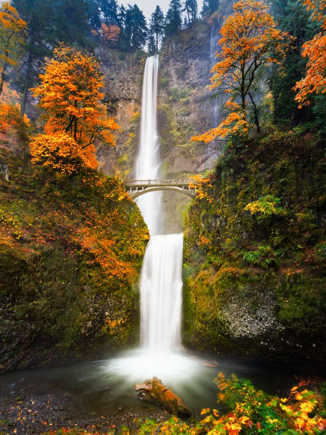 AMERICA'S BEST PLACES TO SEE FALL COLORS : Columbia River Oregon fall colors