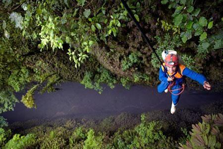 Tours en Excursies North Island, Nieuw-Zeeland | Tiaki Travel  The Lost World Waitomo Caves