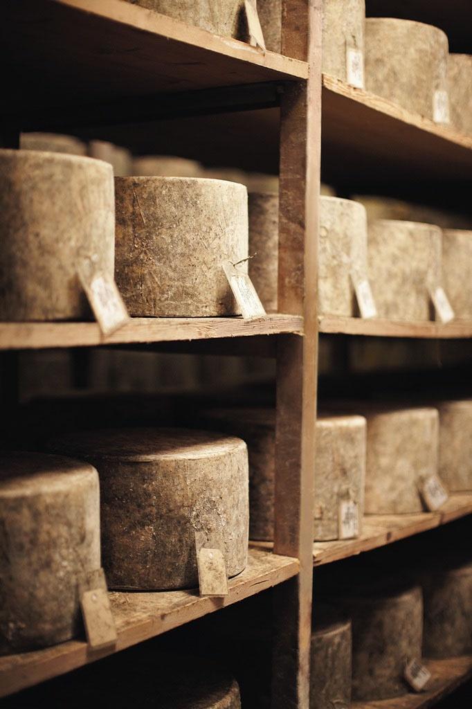 Westcombe Dairy Cheesemakers  #Artisan #Cheese  #Somerset #England #UK