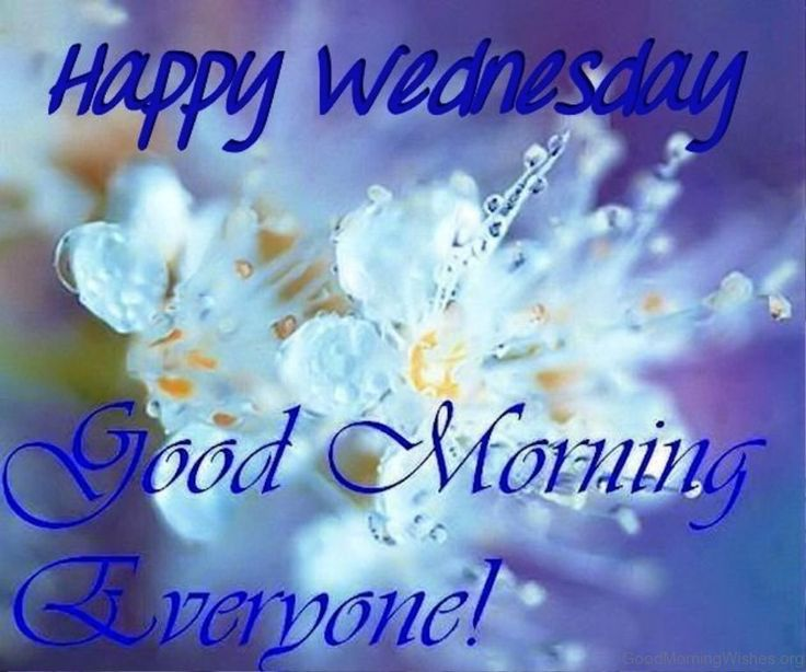 Happy Good Morning Wednesday Wishes With Images