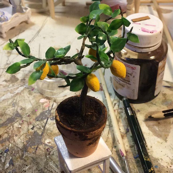 """323 отметок «Нравится», 2 комментариев — Миниатюра_каждый_день (@rem_brant) в Instagram: «RepostBy @tomskaya: """"1:12 lemon tree/ лимонное дерево #домвкоробке #кукольныйдом #кукольныйдомик…»"""