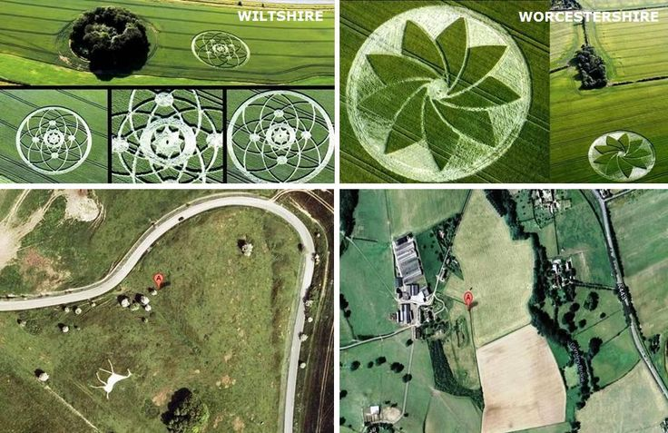 new crop circles 2013 - Google Search