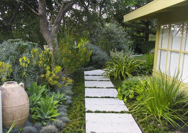 bay area garden tour showcasing local gardens that feature california native plants and