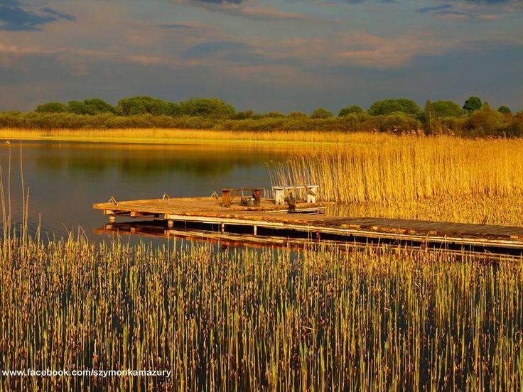 Zatoka Jeziora Szymoneckiego  Autor Łukasz Skiba