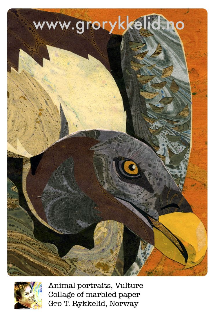 Vulture, collage, marbled paper