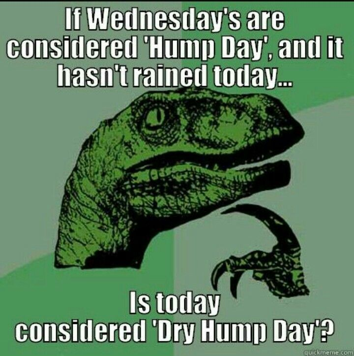 Too many hump days memes to choose from!