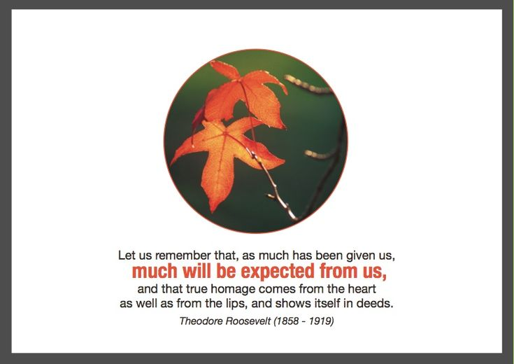 """""""Let us remember that, as much has been given us, much will be expected from us, and that true homage comes from the heart as well as from the lips, and shows itself in deeds.""""  Theodore Roosevelt (1858-1919).  ESA Thanksgiving 2010. http://esacompany.com/image/TGCards/TGCPin2010.jpg"""