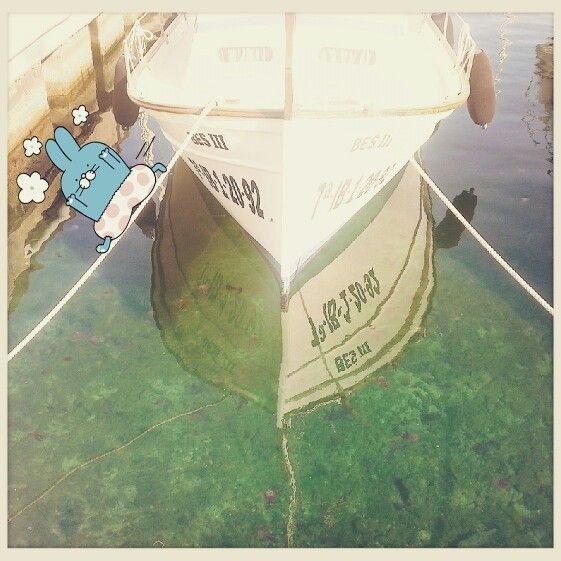 Medusas en Formentera!! Do you see jellyfish? !?! #SloopySails