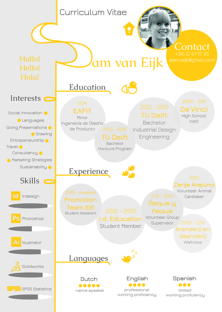 an infographic of my resume  creative curriculum vitae  industrial design engineering  product