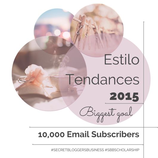 Goals-2015-estilotendances-#secretbloggersbusiness-#sbbscholarship