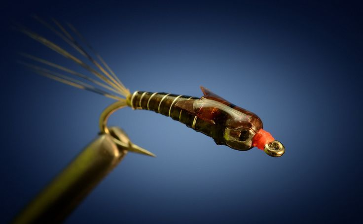 47 best images about nymph flies on pinterest for Fly fish food