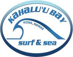 learn to surf Kona