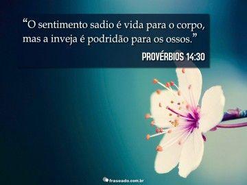 O sentimento sadio é vida para o corpo, mas a inveja é podridão para os ossos. Provérbios 14:30
