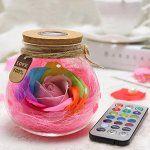 Bouteille de décoration Kuulee avec rose multicolore et LED RVB avec variateur de lumière télécommandé: Source de lumière: 3LED perles,…