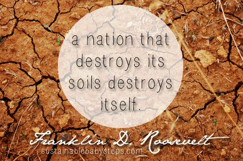 A nation that destroys its soils destroys itself. - Franklin D Roosevelt #eco (Find more green quotes on SustainableBabySteps.com)