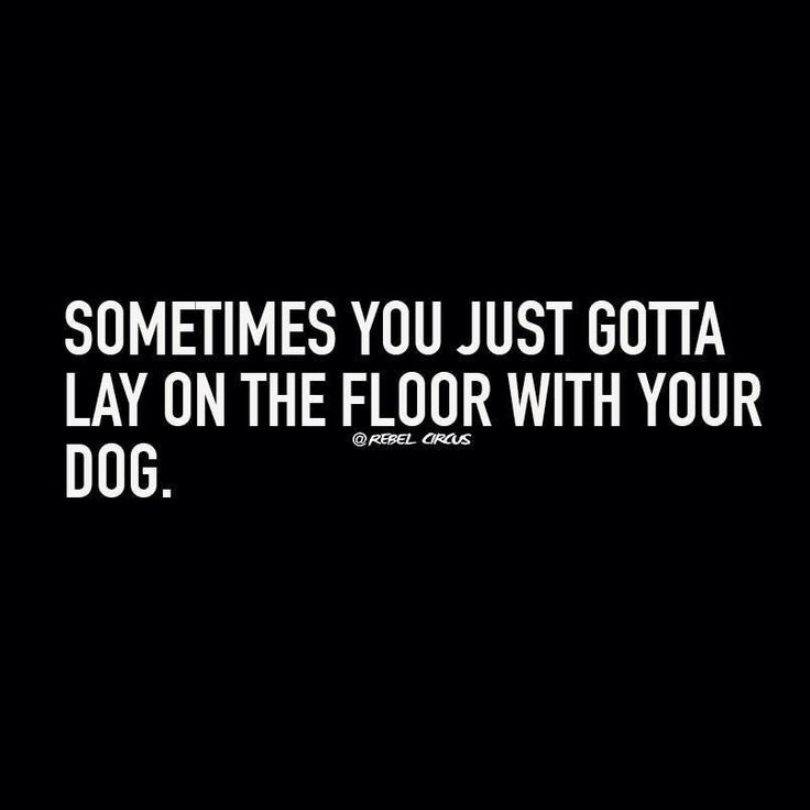 Sometimes you just gotta lay on the floor with your dog. #dog #dogs #pets #animals #quotes