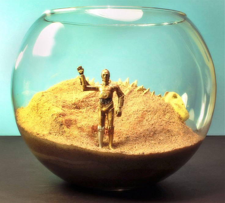 Star Wars - C3PO on Tatooine - Terrarium World. [or betta world, if I can make some sort of sand mold!]