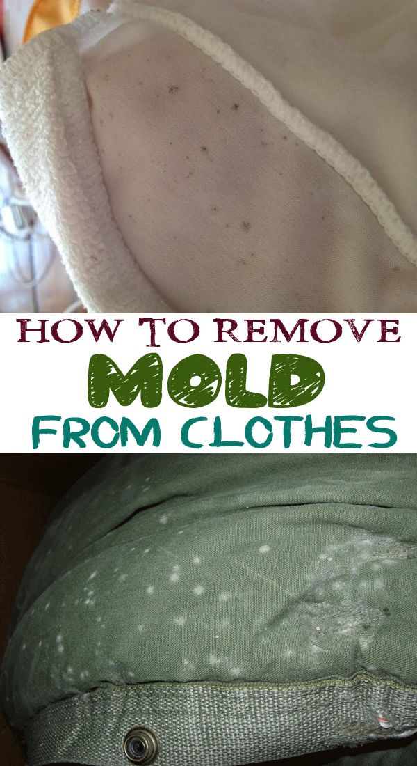 remove mold  clothes great diy  home