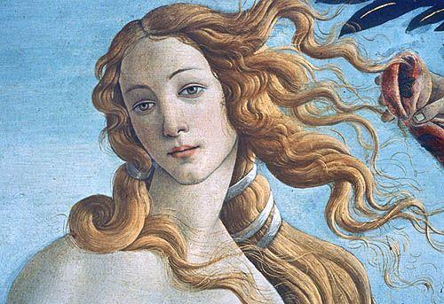 Venus Goddess   Botticelli's 'Venus'