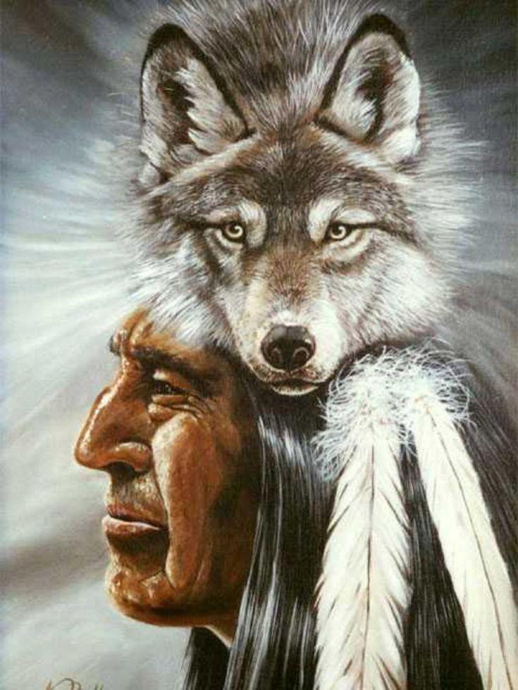 картинка индейца волка самую любопытную часть