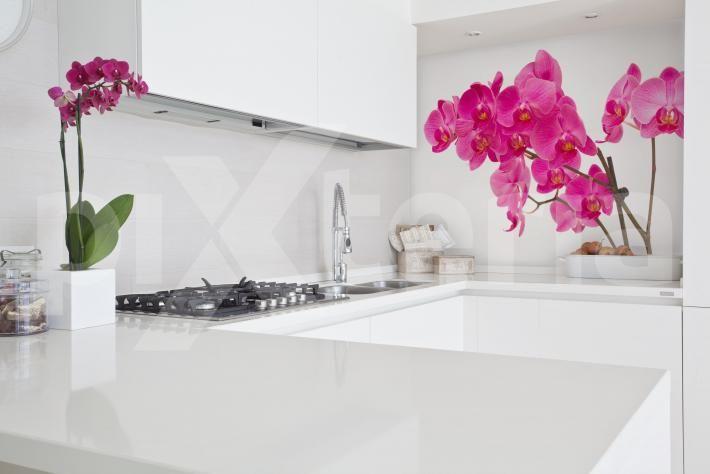 Möbelaufkleber für die Küche - Küchendekorationen mit Blumenmotiven von www.pixteria.de