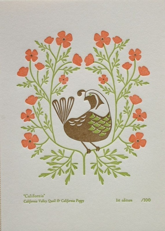 California (from birds and blooms of the 50 states) by Dutch Door Press