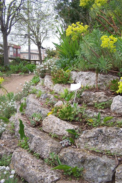 explore retaining wall gardens