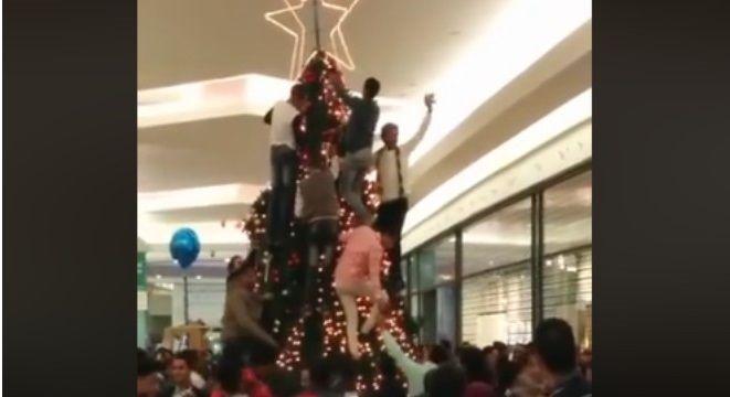 Karácsony egy svéd bevásárlóközpontban. Muszlimok másznak a fenyőre, hogy eltávolítsák a keresztény szimbólumokat. Videó!