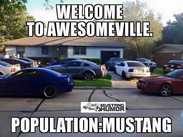 "Welcome to ""AwesomeVille"" Mustang heaven :)"