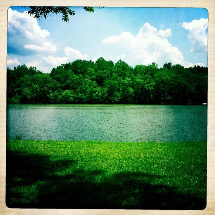 FFA Camp Covington GA