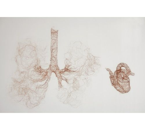 helen pynor untitled (heart lungs) 2007 knitted human hair photographs: danny kildare