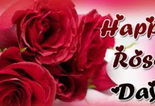 Happy Rose Day Status and Quotes