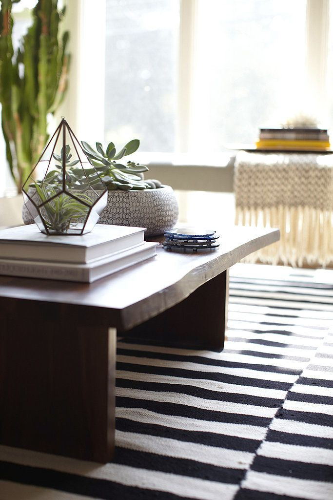 A perfectly styled coffee table complete with succulents.