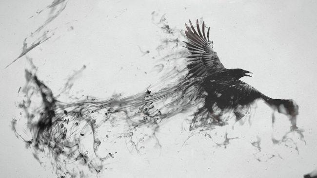 Herunterladen 1920×1080 Full HD Hintergrundbilder Schwarz Rauch Rabe fliegend 10… – Tattoos