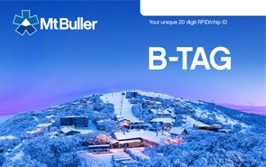 What is a B-TAG?